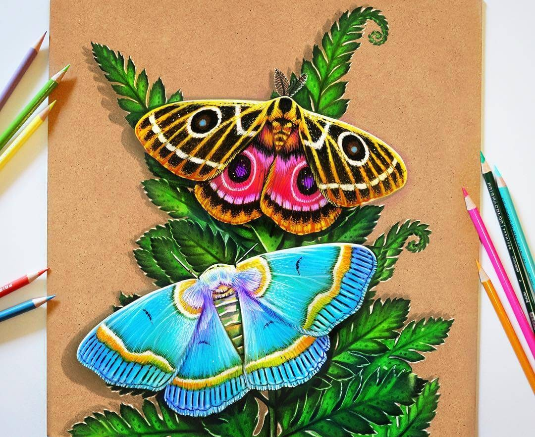 08-Moth-Study-Glowing-Colorful-Drawings-Morgan-Davidson-www-designstack-co