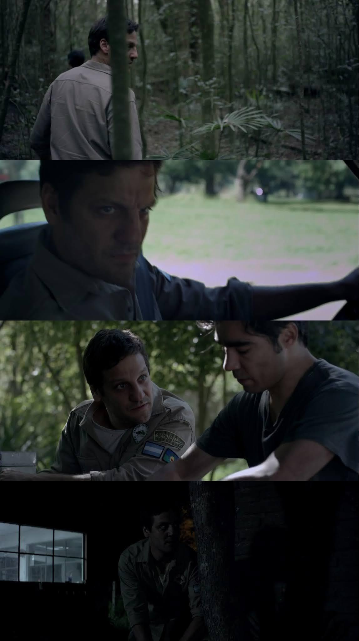 Al Acecho (2019) HD 720p Latino