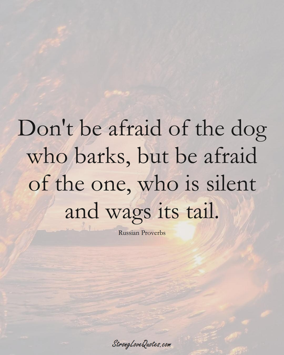Don't be afraid of the dog who barks, but be afraid of the one, who is silent and wags its tail. (Russian Sayings);  #AsianSayings