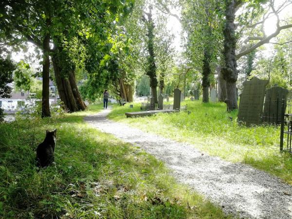 leiden begraafplaats