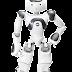 हिमाचल के 1000 छात्र एक साथ सीखेंगे रोबोट बनाना, बनेगा विश्व कीर्तिमान