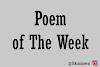 Poem of The Week #7 : Pesona Layu