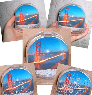Silvana Calabrese Snowball Golden Gate Bridge Loving San Francisco