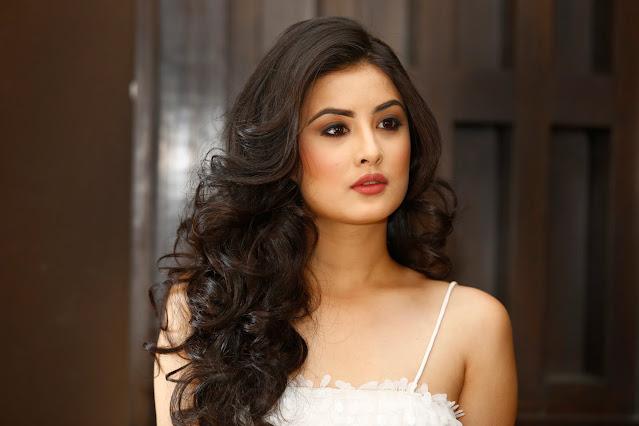 Niti Shah Biography, Age, Height, Education, Boyfriend, Facebook, Twitter, Instagram
