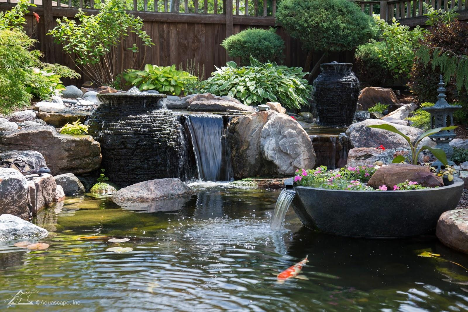poseidon pond mann: how much does a backyard (koi/ecosystem