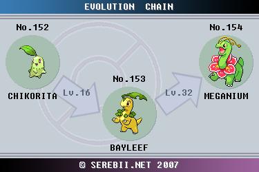 Evolution Chart Of Chikorita