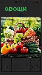 на скамейке разложены разные овощи и в корзинке лежат грозди винограда