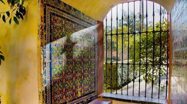 El Alcázar de Sevilla y sus jardines en 20 fotos
