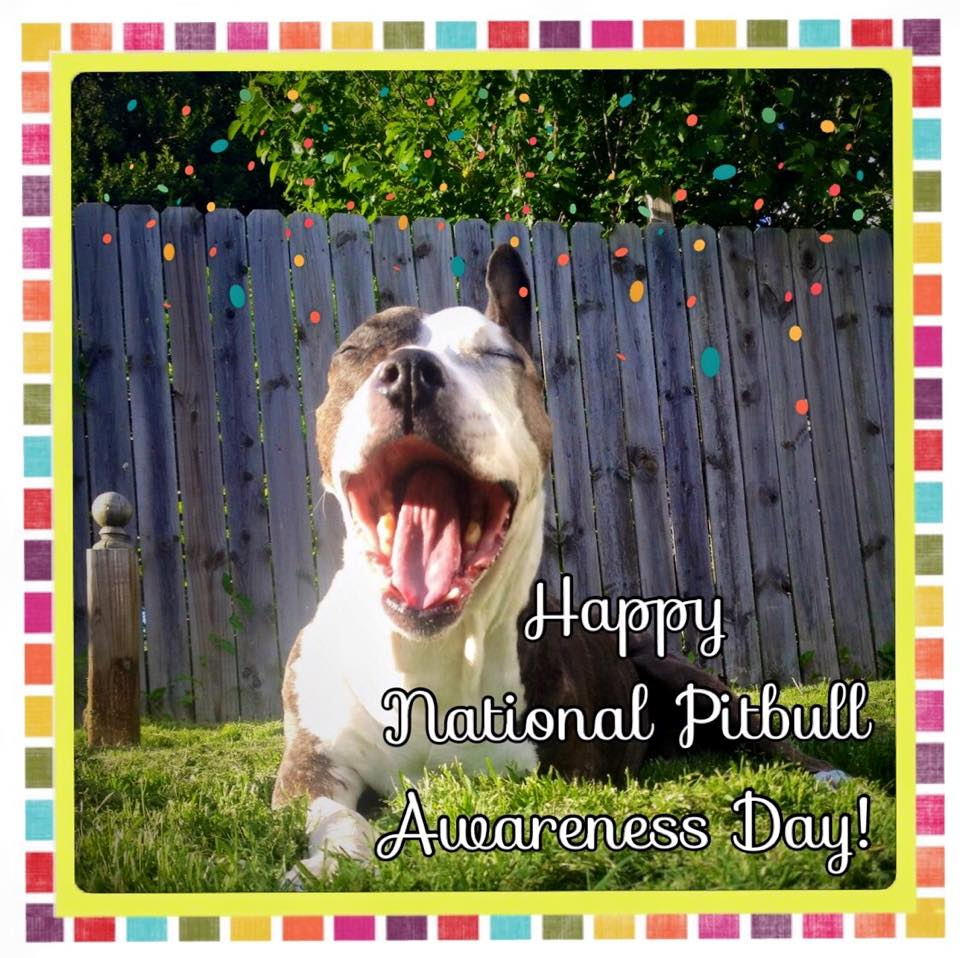 National Pit Bull Awareness Day Wishes For Facebook