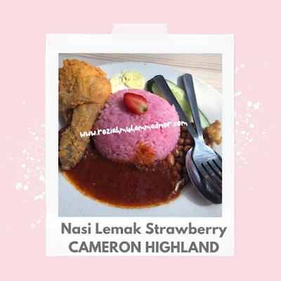 Nasi Lemak Strawberry Cameron Highland