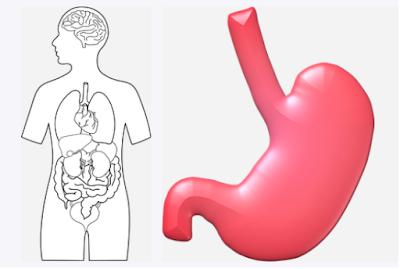 منظار المعدة: أكثر طرق التشخيص إفادة