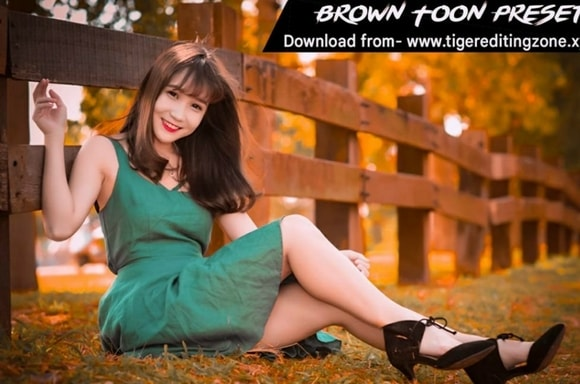 Brown Toon Lightroom Mobile Preset Free Download | New Lightroom Preset Free Download 2021