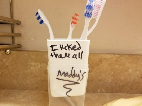 My daughter's attempt to keep her siblings from using her toothbrush