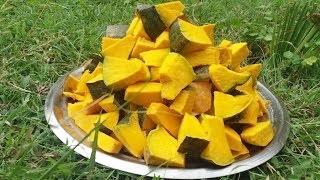 Cooking Special Pumpkin Fry Recipe in My Village | Food Money Food