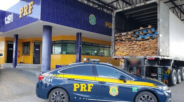 Em Canapi/AL, PRF apreende cerca de 28 m³ de madeira mista na BR-423
