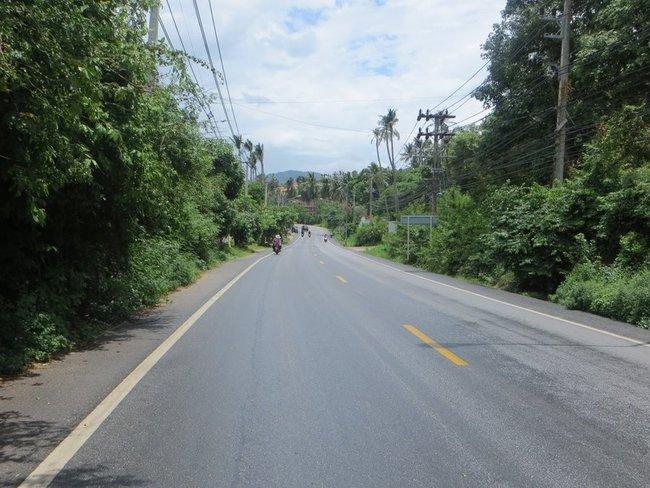 Влажная дорога