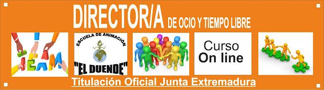 CURSO DE DIRECTORES ONLINE