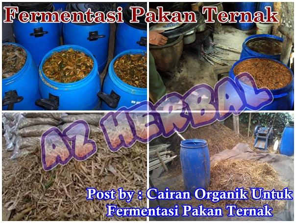 Cairan Organik Untuk Fermentasi Pakan Ternak