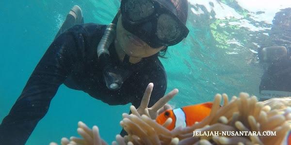 aktivitas snorkeling selama wisata ujung kulon