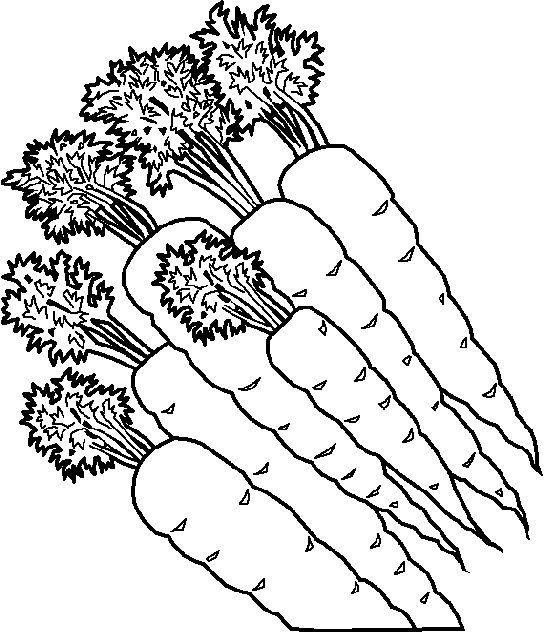 dibujos infantiles de zanahorias para colorear