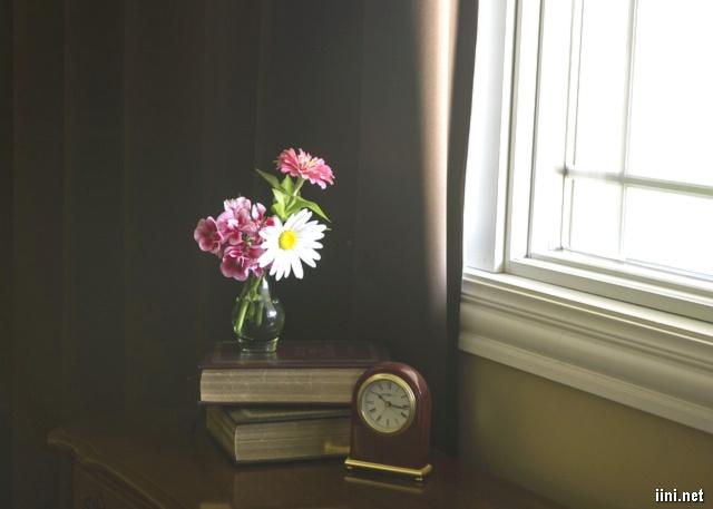 chồng sách và hoa bên cửa sổ