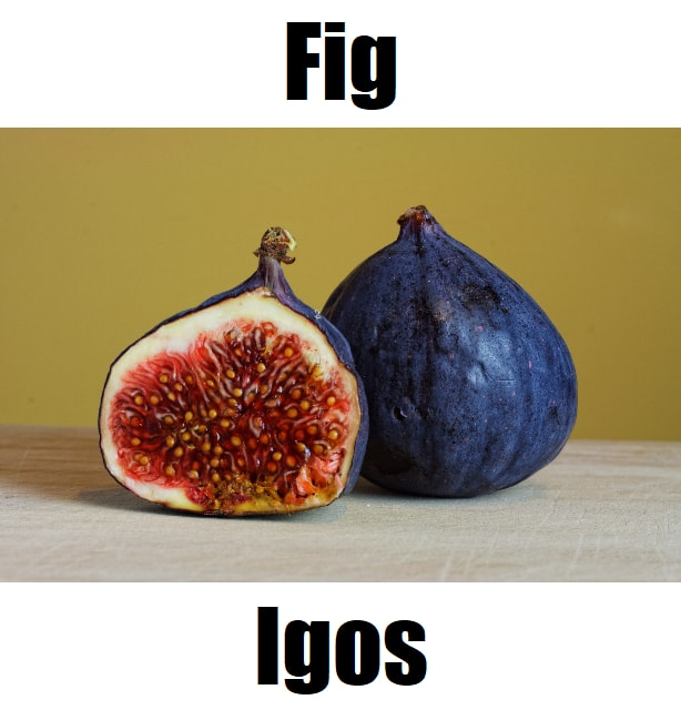 Fig in Tagalog
