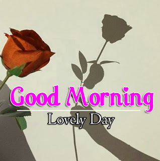 New Good Morning 4k Full HD Images Download For Daily%2B13