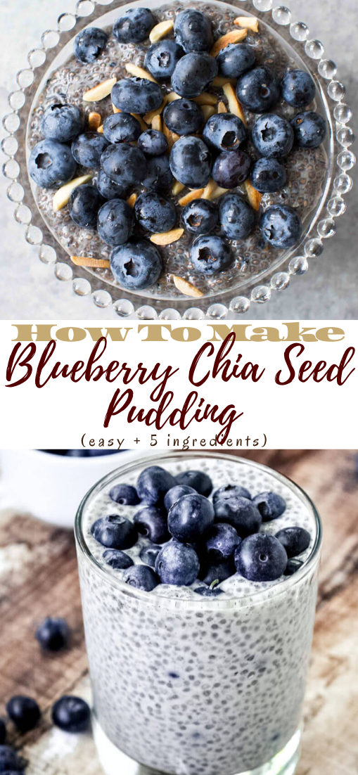 blueberry chia seed pudding (easy + 5 ingredients) #healthydrink #easyrecipe #cocktail #smoothie