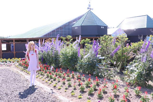 Panoramic Flower Gardens Shikisai-no-oka Hokkaido