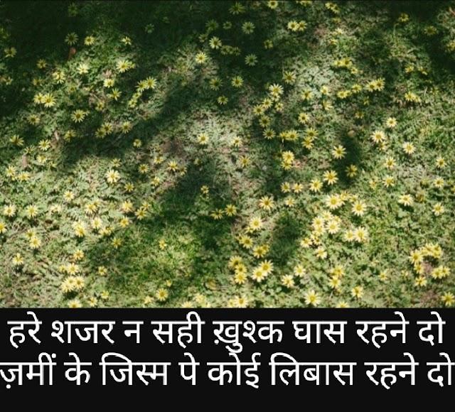 Alphabets of Poets Say on Grass 'दूब' पर कहे शायरों की शायरी