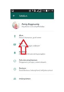 Cara whatsapp tidak online