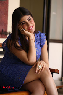Actress Aditi Singh  Pictures in Short Dress at Movie Interview  0189