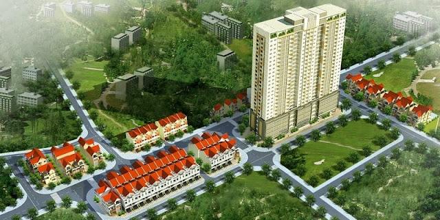 Tổng thể dự án căn hộ chung cư C51.