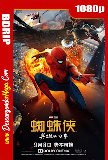 Spider-Man Homecoming (2017) BDRip [1080p] Latino-Ingles