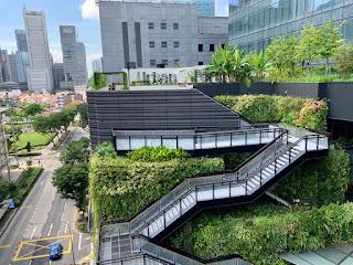 Funan mall's Urban Farm