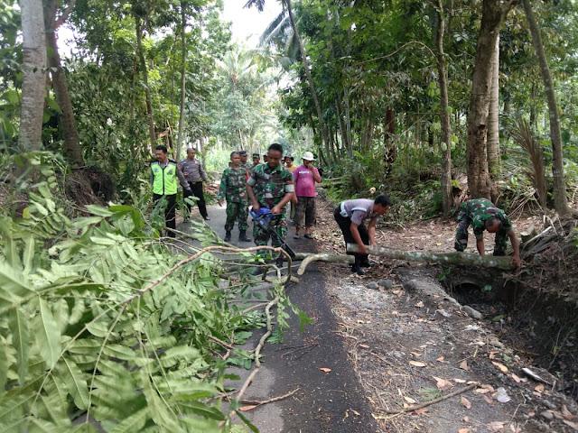 Antisipasi Akan Datangnya Hujan Dan Badai Angin TNI-POLRI Dan Masyarakat Lakukan Pemangkasan Pohon