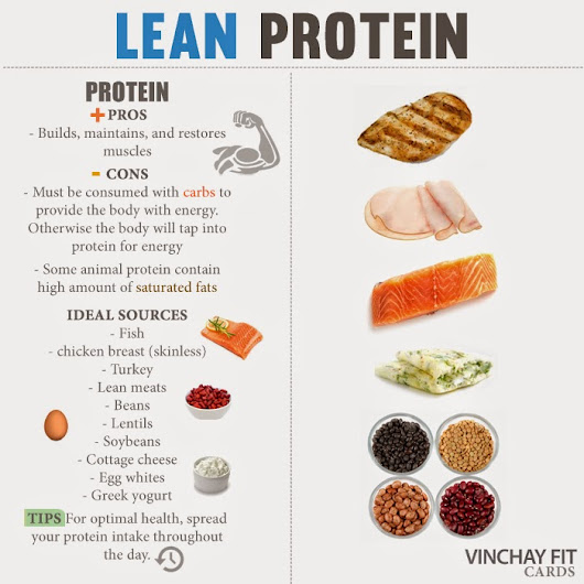 Why Protein Matters
