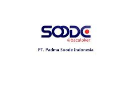 Lowongan Kerja Staff IT PT. Padma Soode Indonesia Maret 2019
