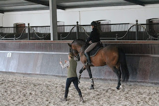 Portugal, Riitta Reissaa, Patricia Palmeiro, Horsexplore, ratsastusmatka