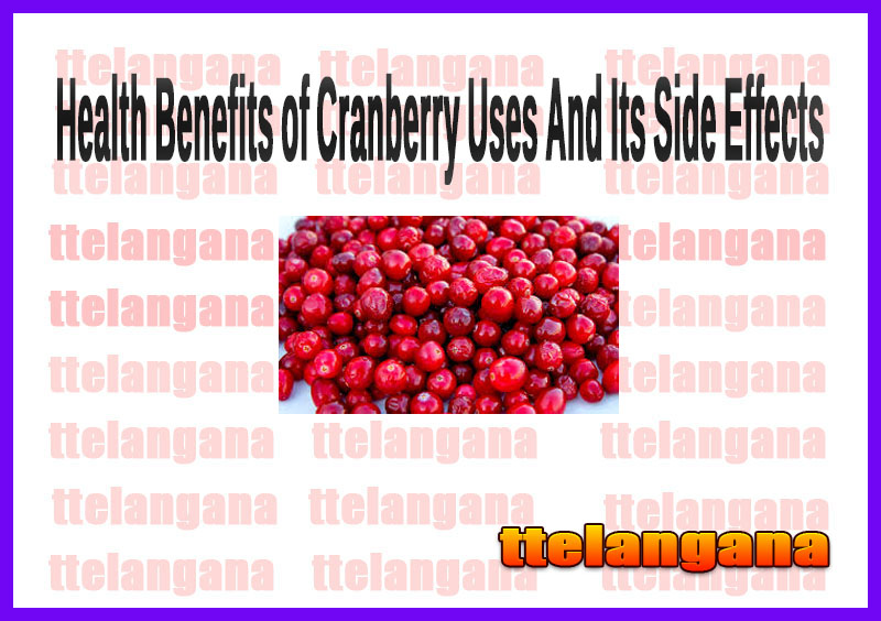 Health Benefits of Cranberry Uses And Its Side Effects