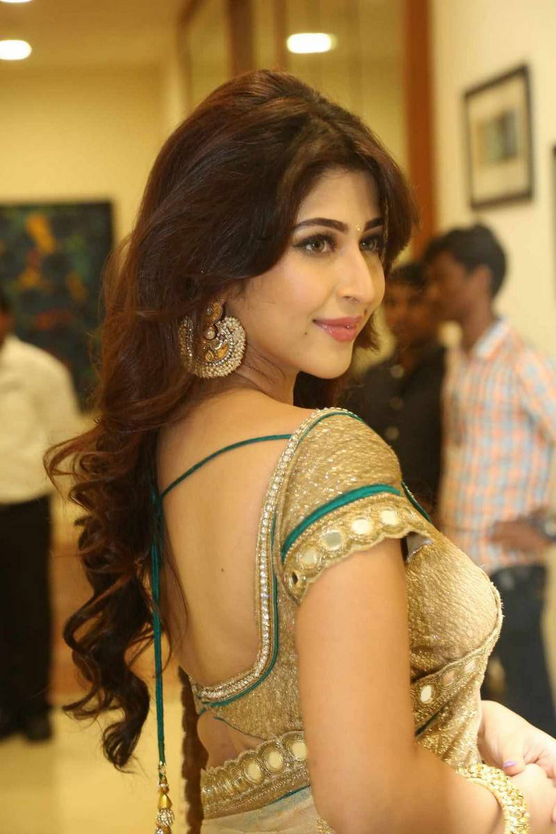 Sonarika Bhadoria Stills In Hot Yellow Saree