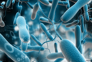 Ketahui Ciri-ciri Gejala Penyakit Kolera