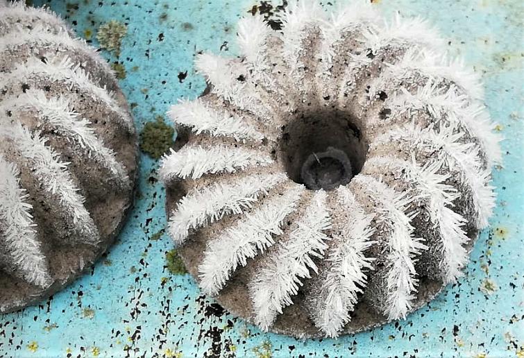Frosteffekte im winterlichen Garten