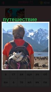 за спиной у мужчине в рюкзаке сидит кошка и путешествует
