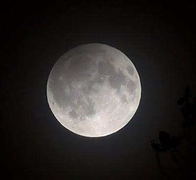 Eclipsa de Lună septembrie 2016 Imagini.