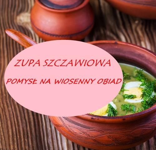 zupa-szczawiowa-przepis-pomysl-na-zupe-zupę-szczaw-wiosenna-prosty-obiad-kolacja-lato-zielonazupa-zupaszczawiowa-przepis-skladniki-na-zupe-co-zrobic-na-obiad-dzieci-dzieciom-blog-kulinarny-blogujacamamadwojki-blogujaca-mama-dwojki