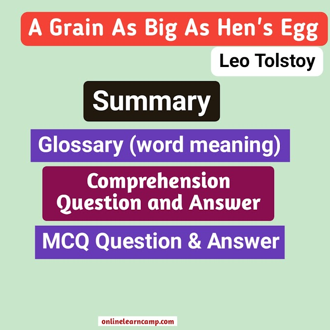 A Grain As Big As Hen's Egg Story Summary And Question Answer MCQ Exam Note