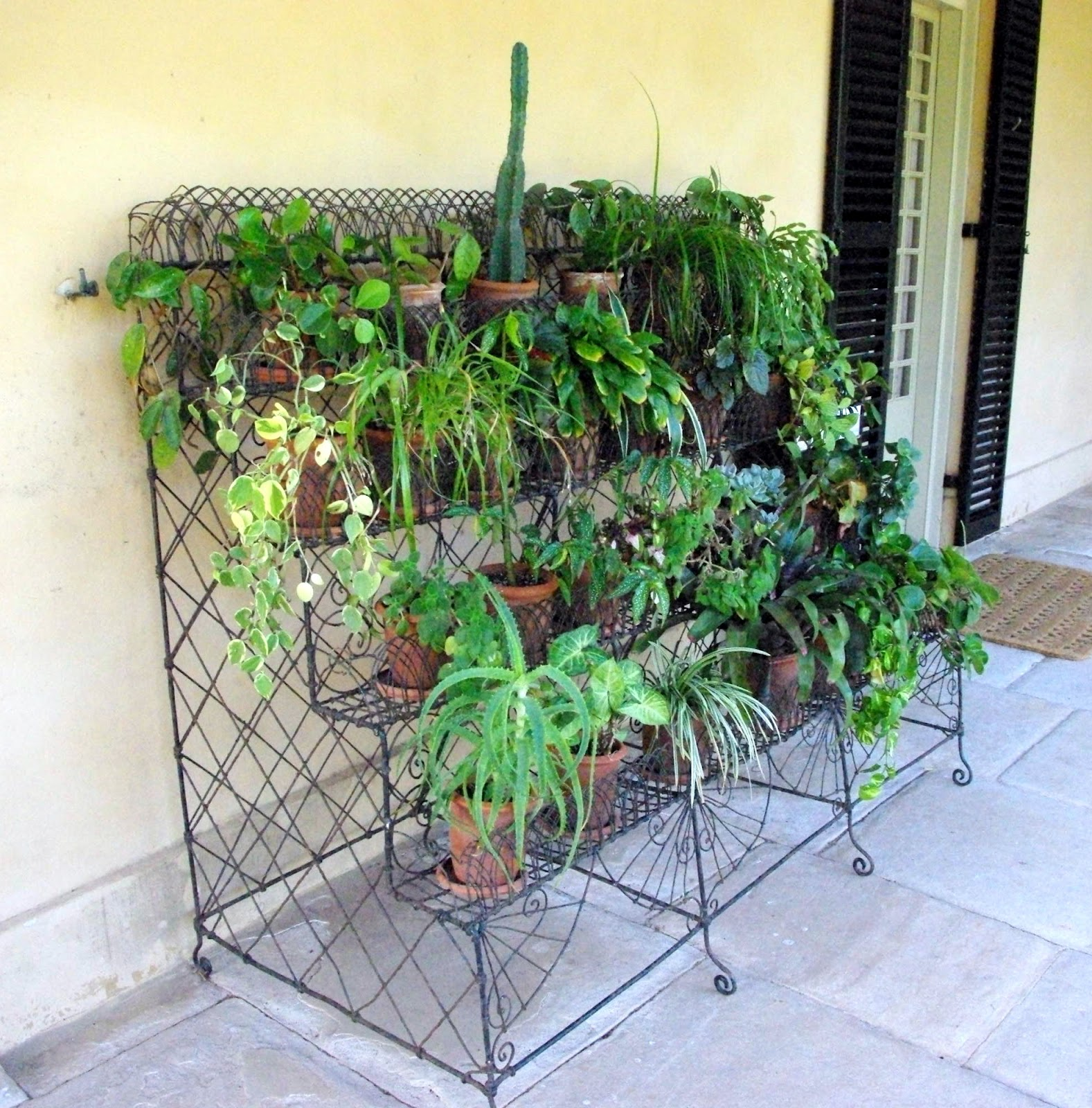 Marvelous Garden Stands For Plants #16: A Beautiful Example Of An Original Wire Work Garden Stand Complete With  Reproduction. Victorian Hand-thrown Terracotta Pots And Popular 19th  Century Plants