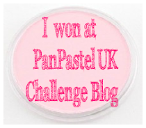I won at PanPastel UK