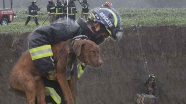 Héctor Hugo, el héroe que bajó 56 metros por los perritos en Puebla